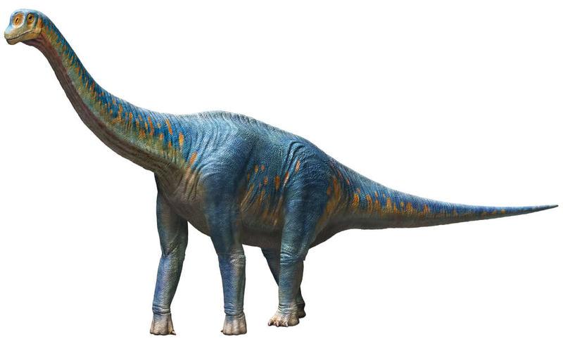 子ども大興奮の「メガ恐竜展」開...